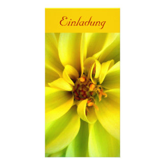 Sun in the eye - INVITATION - postcard Photo Greeting Card