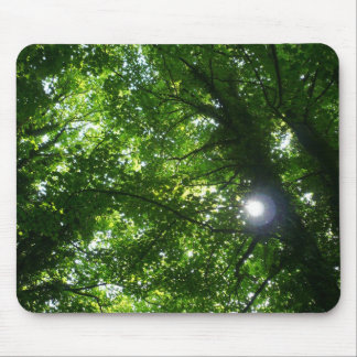 Sun in the Trees Mouse Mats