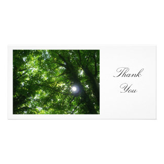 Sun in the Trees - Thank You Customised Photo Card