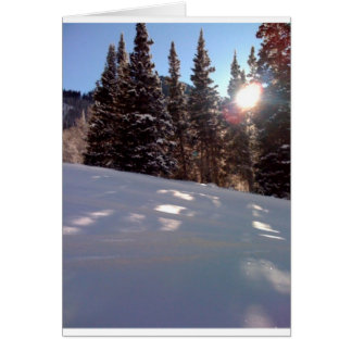 Sun in trees on a ski trail card