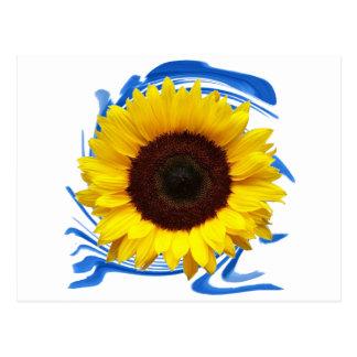 Sun-lights Grace Postcard