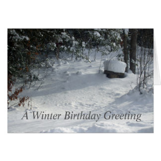 Sun on Snow Covered Yard Card