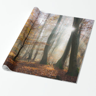 Sun Rays Mystic Misty Forest, Gift Wrapping Paper