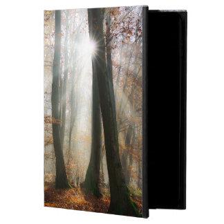 Sun Rays Mystic Misty Forest, hardcase
