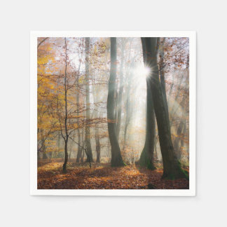 Sun Rays Mystic Scenic Fall Forest Nature Photo -- Disposable Serviette
