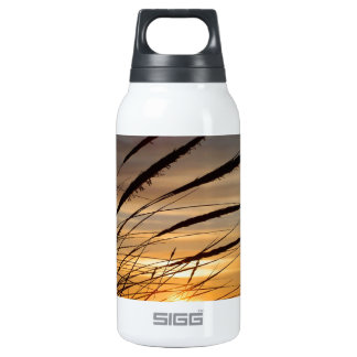 Sun Set 0.3L Insulated SIGG Thermos Water Bottle
