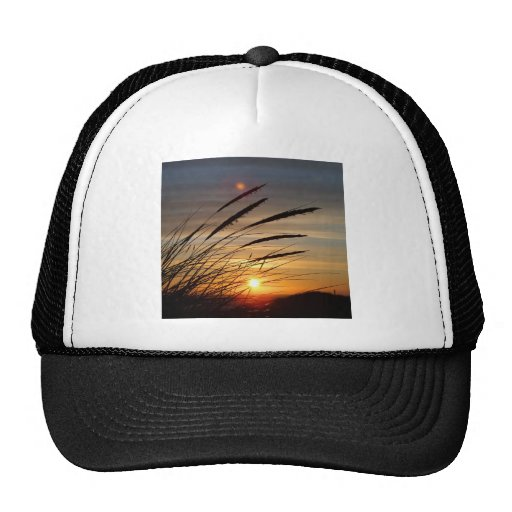Sun Set Mesh Hats