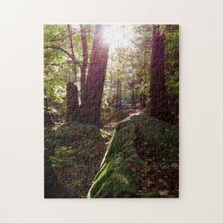 Sun Shines Through the Trees Jigsaw Puzzle