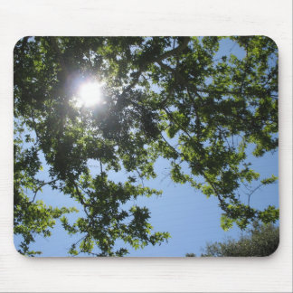Sun shines through the trees - mousepad