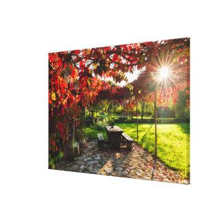 Sun through autumn leaves, Croatia Canvas Print