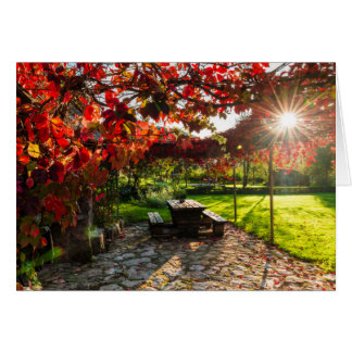 Sun through autumn leaves, Croatia Card