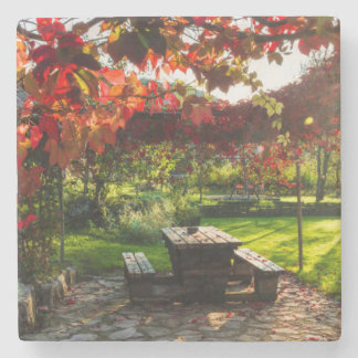 Sun through autumn leaves, Croatia Stone Coaster