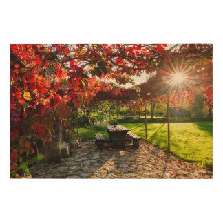 Sun through autumn leaves, Croatia Wood Wall Art