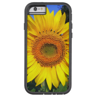 Sun-Yellow Sunflower Tough Xtreme iPhone 6 Case
