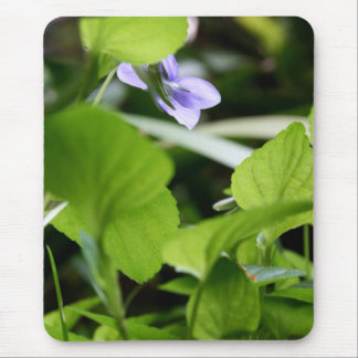 Sunbathing? Wild Violets - Floral Photography Mouse Pad