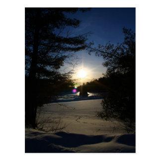 Sunbeams and Daydreams Postcard