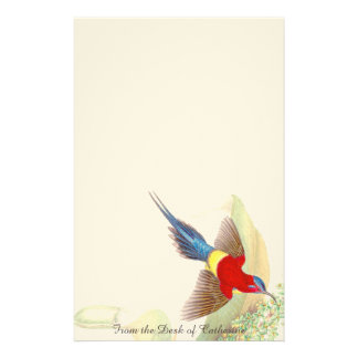 Sunbird Bird Asian Wildlife Stationery
