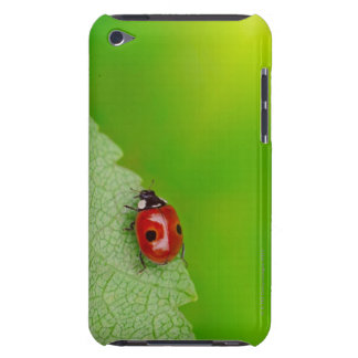 Sunburst above tiny ladybird climbing up a fresh iPod touch Case-Mate case