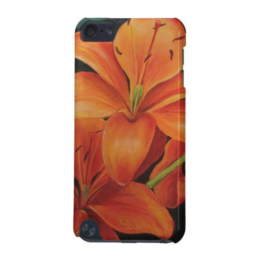 Sunburst iPod Touch 5G Covers