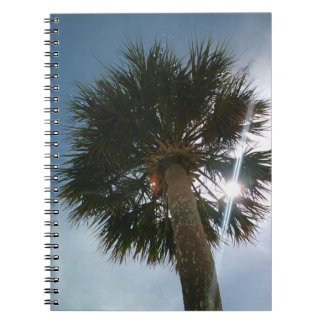 Sunburst Palm Note Book