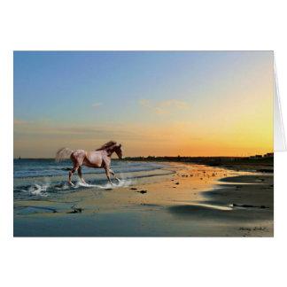 Sunderland - Seaburn Beach Card