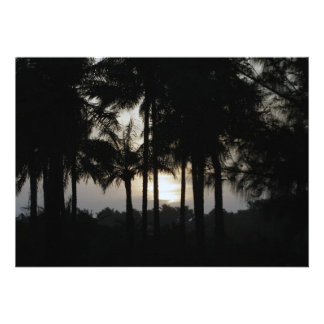 Sundown in a palm forest invitations