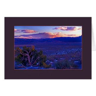 Sundown, Mojave Desert Card