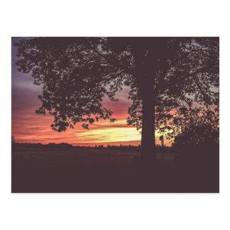 Sundown on the Farm Postcard