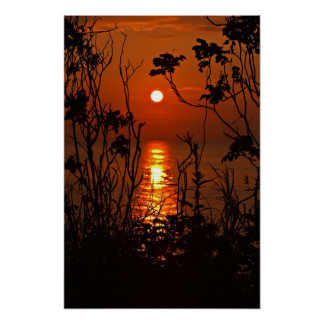 Sundown on the ocean with tree posters