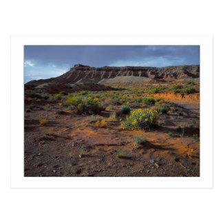 """""""Sundowner Plateau"""" Postcard"""
