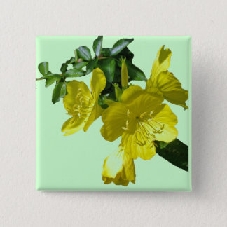 Sundrops Primrose Coordinating Items 15 Cm Square Badge