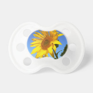 Sunflower 01.1rd, Field of Sunflowers Baby Pacifiers