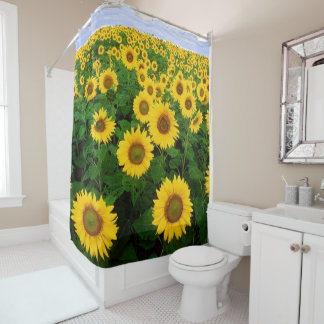 sunflower 1 for ruth shower curtain
