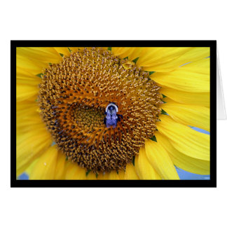 Sunflower and Bee Notecard Note Card