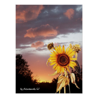 SUNFLOWER AND PINK SUMMER SUNSET POSTER