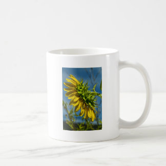 Sunflower Beauty Coffee Mugs