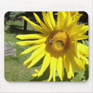 Sunflower & bee mouse pad