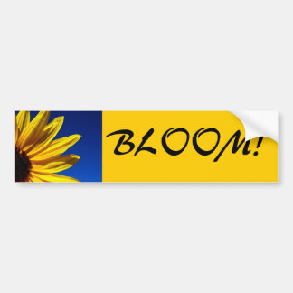 Sunflower Bloom Bumper Sticker