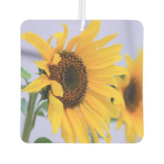 Sunflower bloom car air freshner