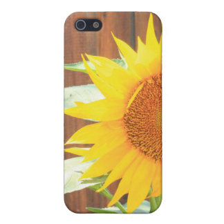 Sunflower Bloom phone case Cover For iPhone 5/5S
