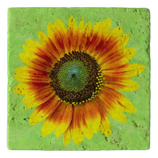 Sunflower Bold Floral Yellow and Green Flower Trivet