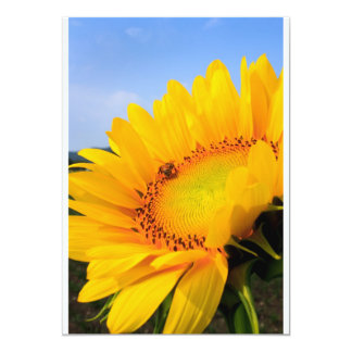 sunflower card 13 cm x 18 cm invitation card