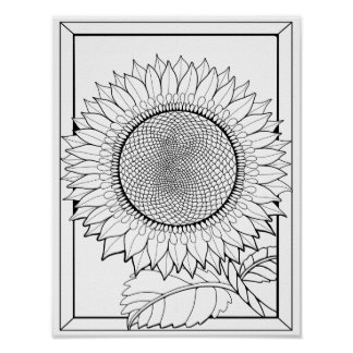 Sunflower Cardstock Adult Coloring Page Poster