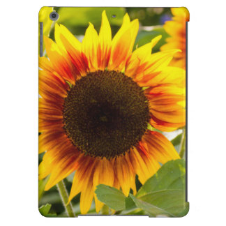 Sunflower Case For iPad Air