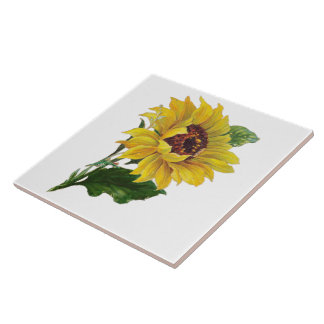 Sunflower Ceramic Tile