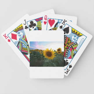 Sunflower Closeup Bicycle Playing Cards
