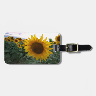 Sunflower Closeup Luggage Tag