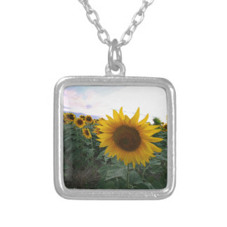 Sunflower Closeup Silver Plated Necklace