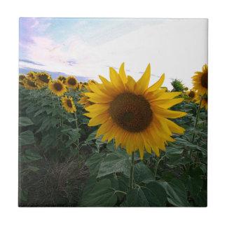 Sunflower Closeup Tile
