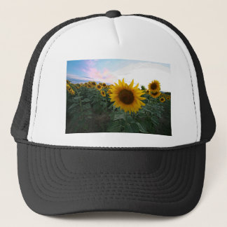 Sunflower Closeup Trucker Hat